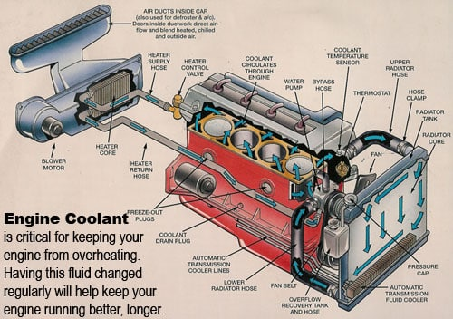 automotive-cooling-system-diagram